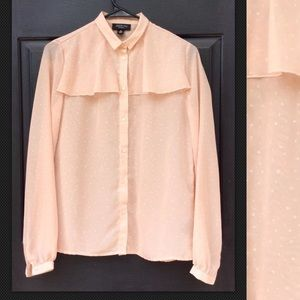 JASON WU Target Long Sleeve Sheer Blouse Blush Dot